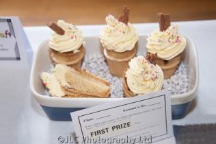 First Prize winning ice cream cakes. Photo: JLC Photography Ltd.