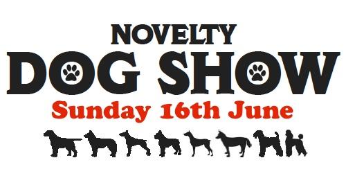 Novelty Dog Show 16th June 2013